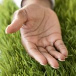 African woman¿s hand open in grass